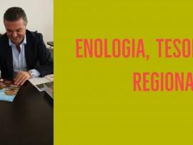 L'enologia: una qualità da sfruttare
